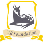 VR Foundation